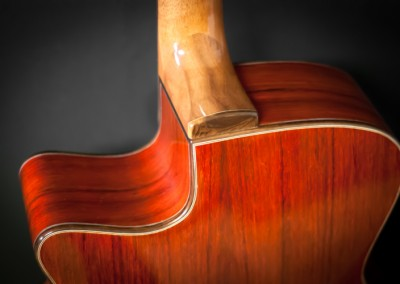 5.Guitare Jumbo Damien Leturcq dos