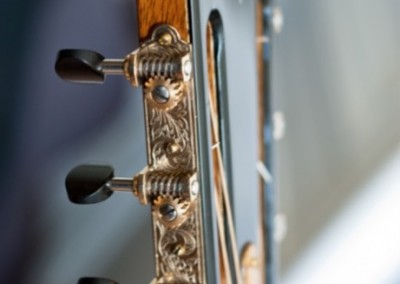 Orchestra Palissandre profil tête